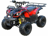 Cougar Cycle | Rider 7 | Kids ATV (Kids Four wheeler)