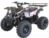 Cougar Cycle | Rider 9 | 125cc | Intermediate Size | Kids Utility ATV