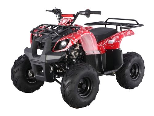 TaoTao | ATA-125D | 110cc | Mid Size | Kids Utility ATV