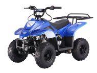 TaoTao | Boulder B1 | 110cc | Mini Size | Kids ATV