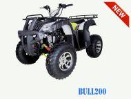TaoTao | Bull 200 | 200cc | Full Size | Utility ATV