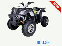 TaoTao | BULL 200 | Full Size ATV ( Four wheeler)