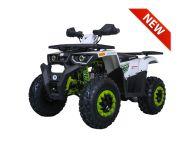 TaoTao | G200 |  200cc | Full Size | Utility ATV