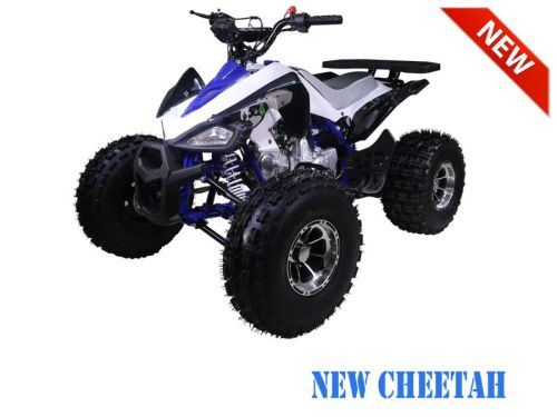 TaoTao | New Cheetah | 125cc | Intermediate Size | Kids Sport ATV