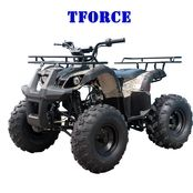 TaoTao | T-Force | 125cc | Intermediate Size | Kids Utility ATV
