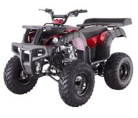 Offering a complete line of Kids Chinese ATV's, Affordable