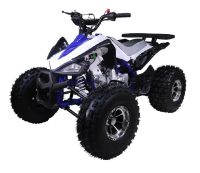 Chinese Atv For Sale >> Offering A Complete Line Of Kids Chinese Atv S Affordable Pit Bikes