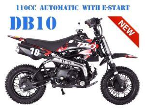 TaoTao | DB10 | Dirt Bike (110cc - Fully Automatic)